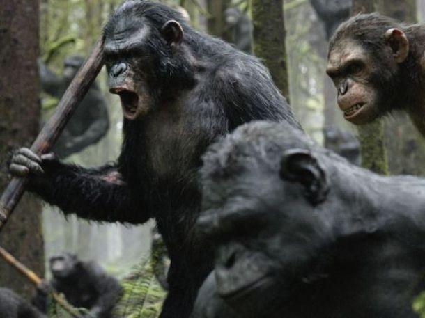 apes6